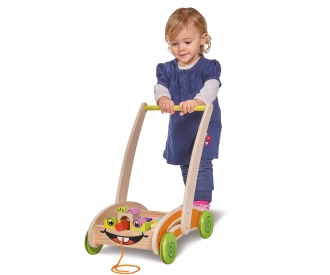 EH Activity Walker
