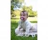 Eichhorn Baby Pure Schnullerkette