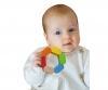 Eichhorn Baby, Greifling Sechseck
