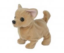 CCL Baby Puppy