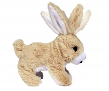 CCL Cute Rabbit