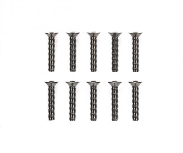 3x16mm Steel CS HexHead Screws (10)