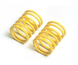 TRF S. Damper Spring Medium*2