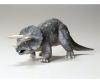 Triceratops Eurycephalus