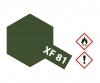 XF-81 Flat Dark Green 2 RAF 10ml