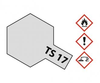 TS-17 Aluminum Silver Gloss 100ml
