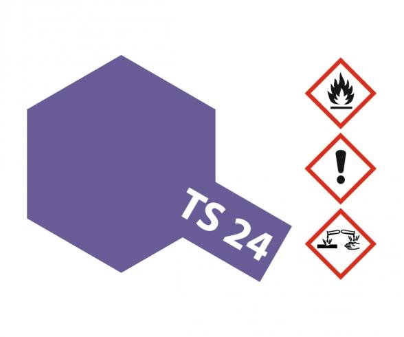 TS-24 Purple Gloss 100ml