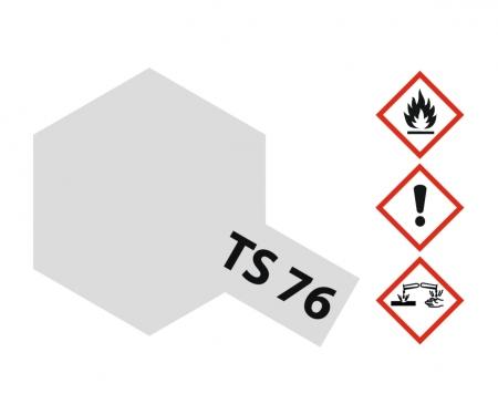 TS-76 Mica Silver Gloss 100ml