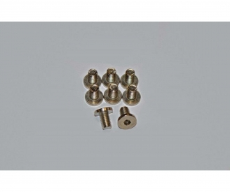 Motor Screws, CY-2 Chassis, 8 pcs.