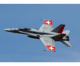 1:72 F/A 18 Swiss Air Force