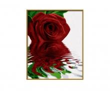 Rote Rose Malen nach Zahlen