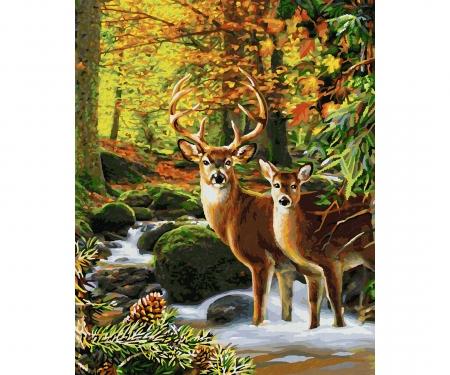 Hirsche im Wald Malen nach Zahlen Vorlage