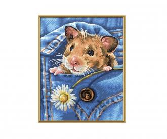 PBN - Golden hamster