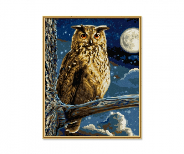 The Eagle Owl – Master of the Night