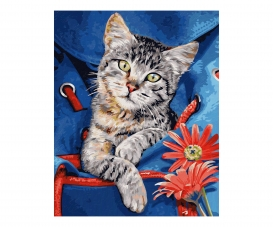 Katze im Rucksack