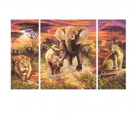 Afrique – Les Big Five