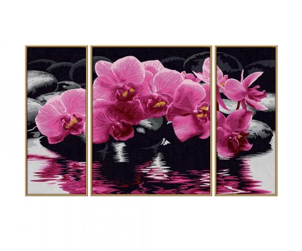 Orchideen Malen nach Zahlen
