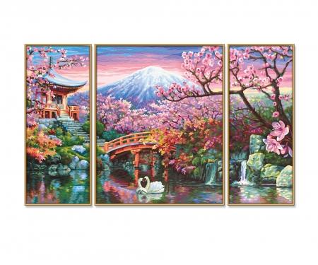 Cherry blooming in Japan