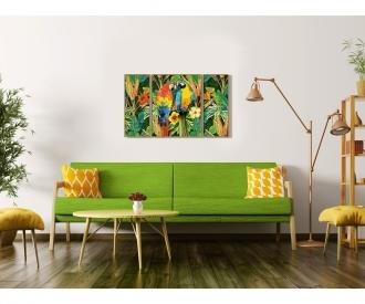 Perroquets des tropiques