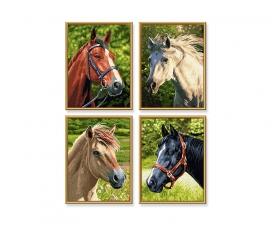 Pferde & Pony Malen nach Zahlen