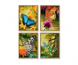 Schmetterlinge Malen nach Zahlen