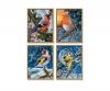 Wintervögel Malen nach Zahlen