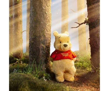 Disney WTP Basic, Winnie Pooh, 25cm